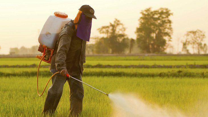 Identifican 44 pesticidas prohibidos en Europa que están siendo aplicados en Chile