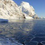 La Organización Meteorológica Mundial confirma récord de temperatura en la Antartica