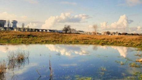 Denuncian destrucción de humedal Los Sapos en comuna de Osorno